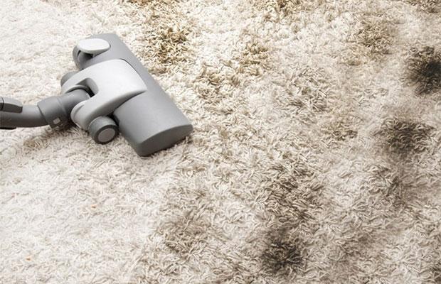 Для сухой чистки ковролина используется пылесос