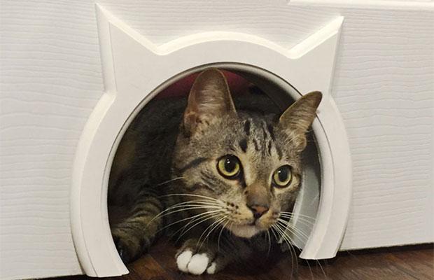 Лаз для кошки можно оформить декоративными элементами, чтобы он не портил внешний вид двери