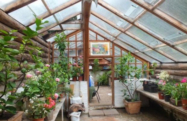 В теплице термосе для растений создаются условия, максимально приближенные к природным