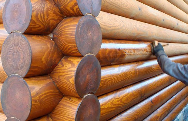 После обработки маслянистым антисептиком окрашивать древесину сложно