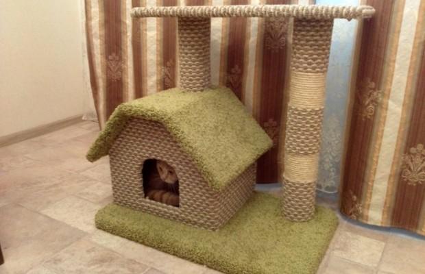 Домик для кошки должен соответствовать её потребностям