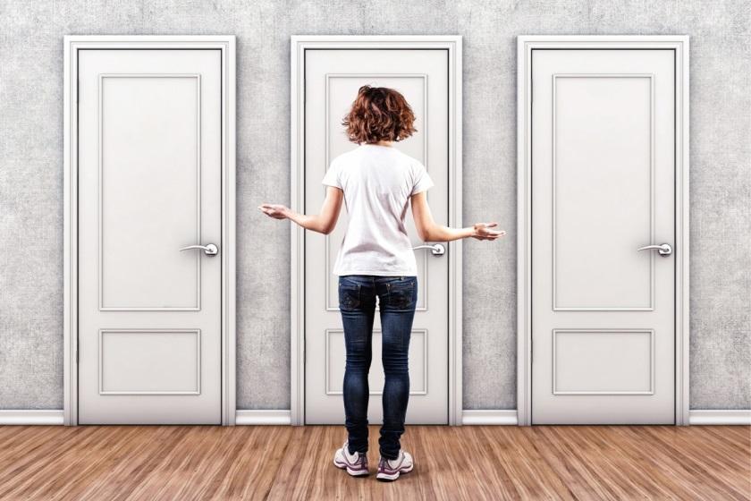 Какие двери из массива выбрать