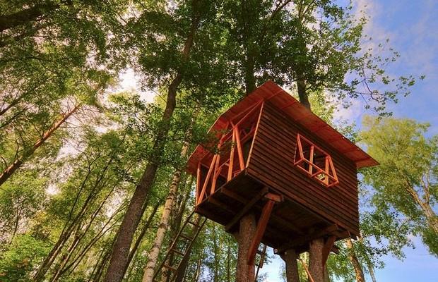 Строительство домика на дереве своими руками