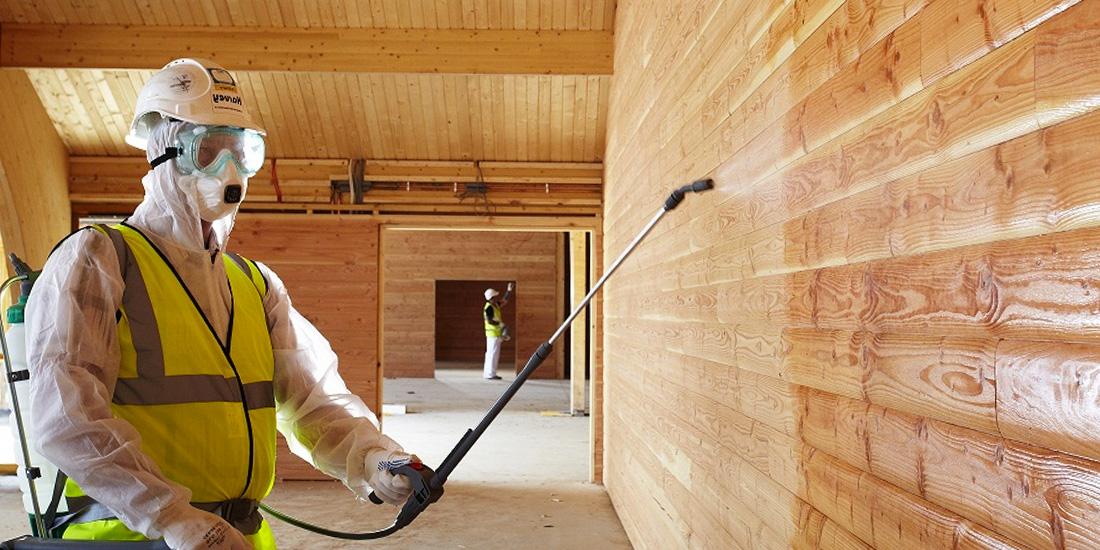 Почему гниет древесина – возможные причины и способы их устранения